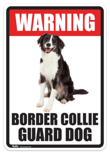 Border Collie Guard Dog Sign